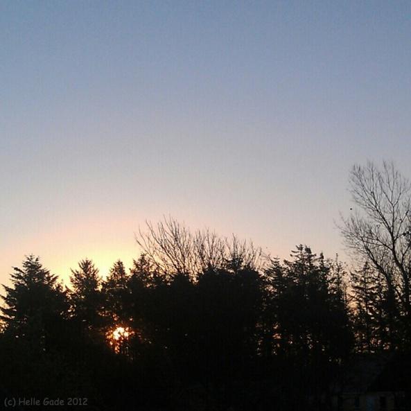 Sunrise With Halo